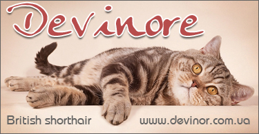 DEVINORE*UA ::
