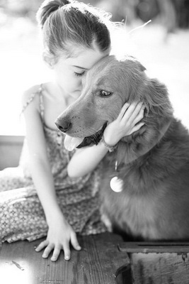 аллергия на собаку как проявляется фото